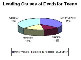 Teen Driving Graphic